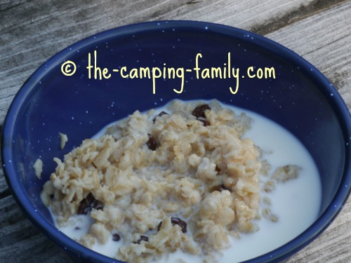 bowl of oatmeal with raisins and milk
