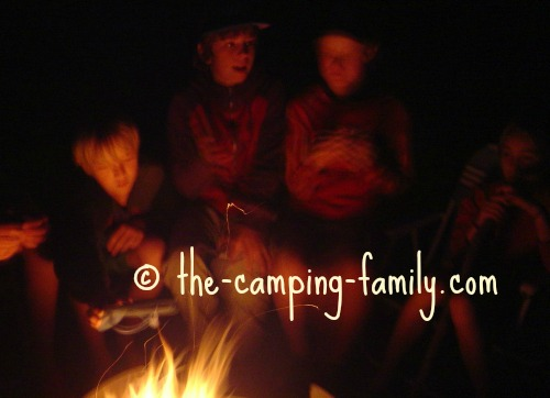 people around the campfire