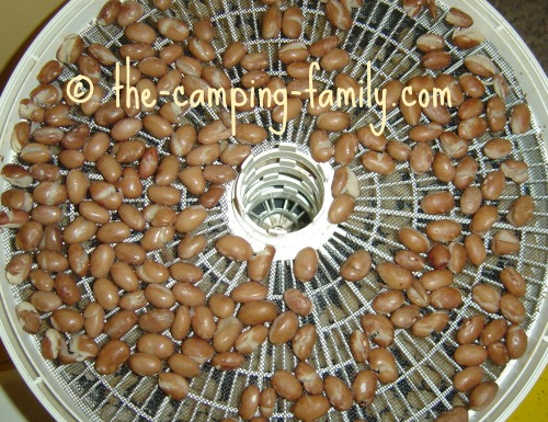 food dehydrator tray with beans