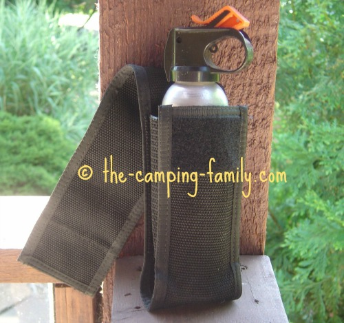 bear spray in holster