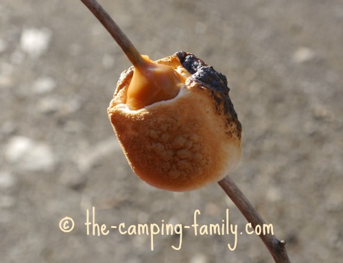 marshmallow and caramel on a stick