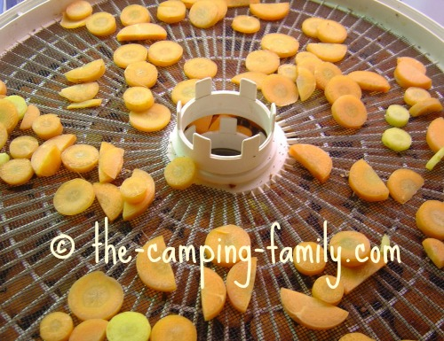 food dehydrator tray with carrots