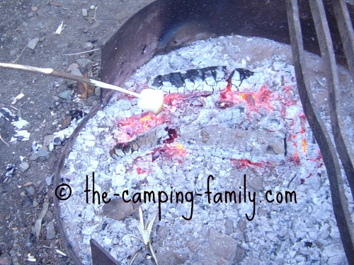 roasting a marshmallow over coals