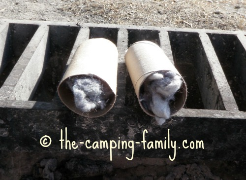 dryer lint inside toilet paper tubes