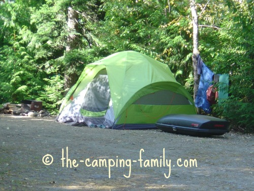 green tent in wooded campsite