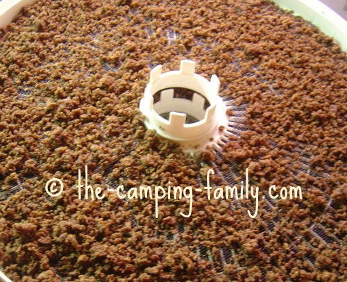 dehydrated ground beef