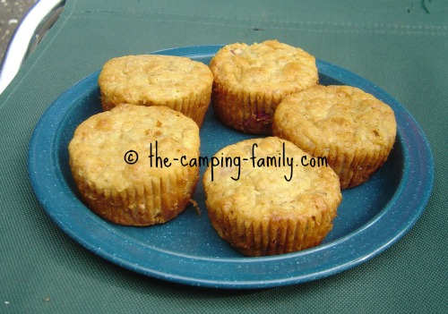 healthy berry muffins on a camping plate