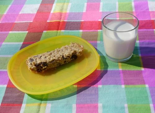 homemade granola bar