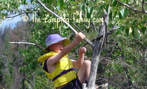 boy wearing life jacket climbing tree