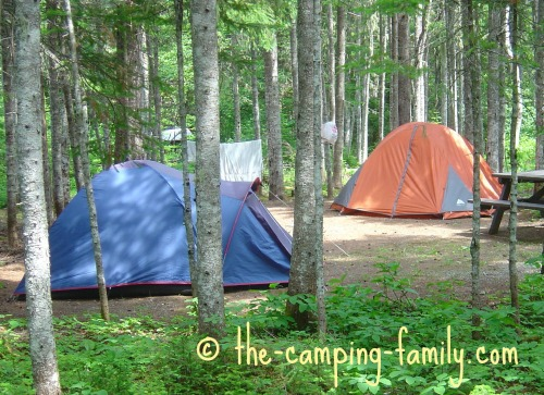 wooded campsite with tents