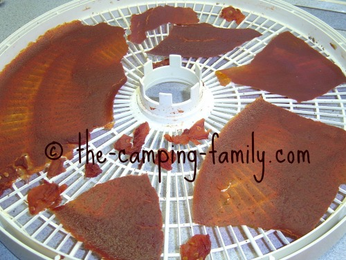 dried tomato sauce in dehydrator