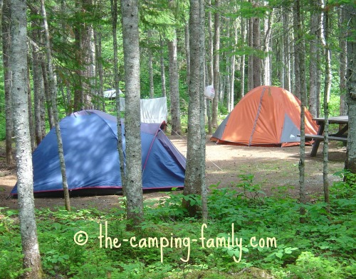 wooded campsite with two tents