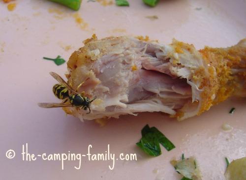 wasp on chicken leg
