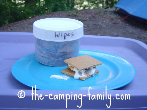 homemade baby wipes and Smores