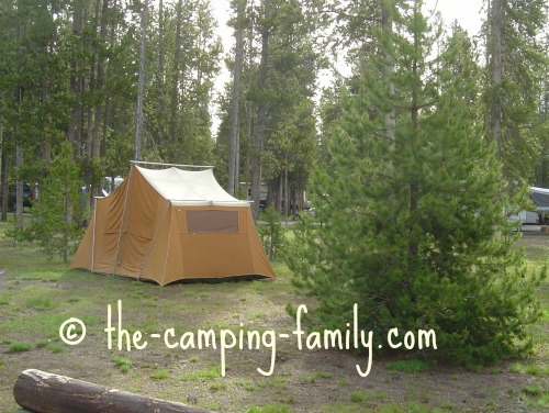 canvas tent in treed campsite
