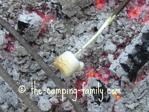 marshmallow over coals