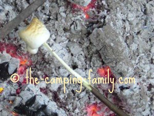 roasted marshmallow on stick