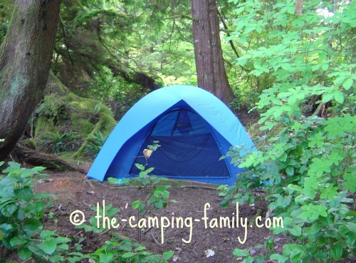 tent in sheltered campsite