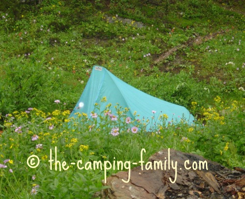 backpacking tent in meadow