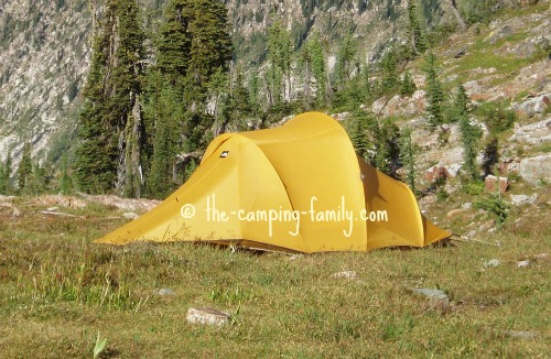 backpacking tent in alpine meadow